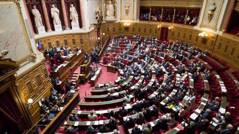 Le Sénat adopte un texte transpartisan pour concilier transition numérique et écologie