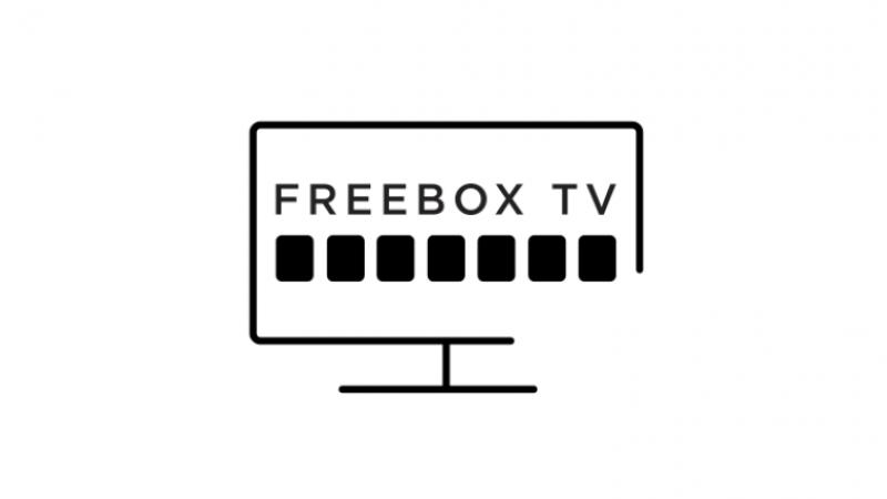 Combien de chaînes TV différentes regardez-vous sur la Freebox ?