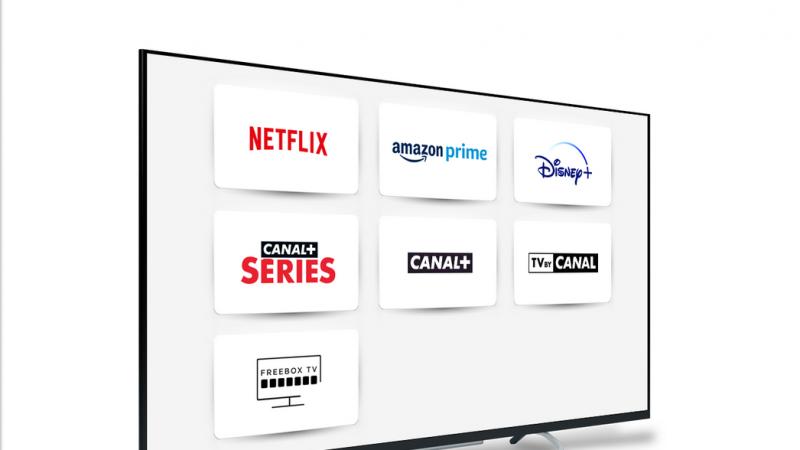 Netflix, Disney+, Salto… quels services de SVOD utilisez-vous sur la Freebox ?