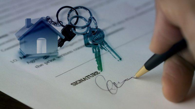 Fibre optique : un critère de choix de plus en plus important pour acheter un logement