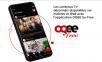 Free lance officiellement son application Oqee sur iOS mais aussi sur Android