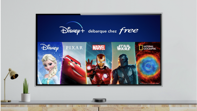 Free will launch the Disney + service on the Freebox Delta, and in a very short time